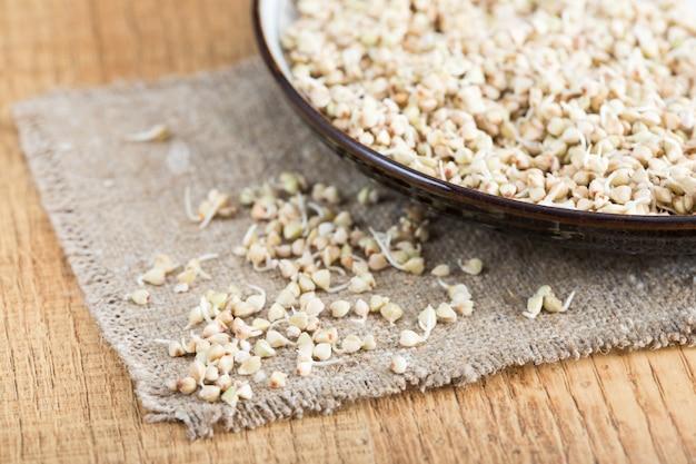 Germogli di grano saraceno verdi freschi nel primo piano del cucchiaio