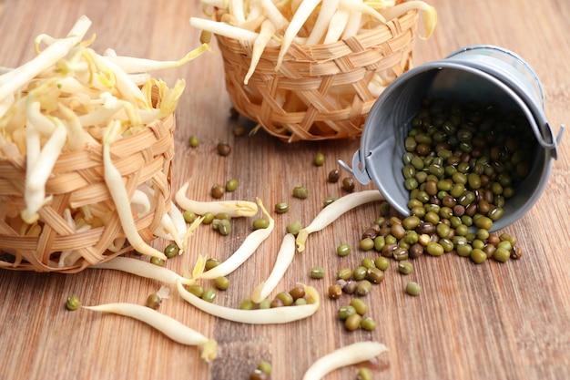 Germogli di soia con seme