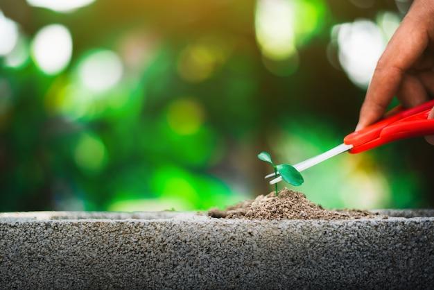 Germogliare crescendo sul terreno e mano che tiene forbici andando a tagliarlo, distruggere la nuova vita e il concetto di speranza