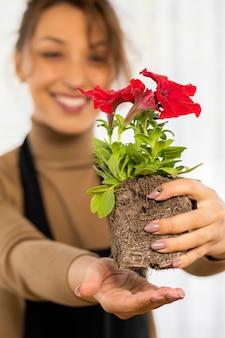 Germoglio allegro attraente della petunia del fiore della tenuta della ragazza con le radici prima della piantatura