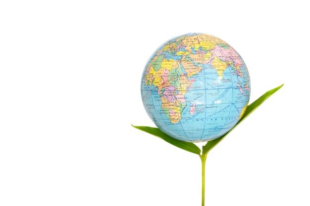Germoglio verde fresco con il globo blu sopra, isolato con lo spazio della copia, concetto della terra fresca