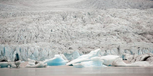 Ghiacciaio che incontra l'oceano e gli iceberg che galleggiano