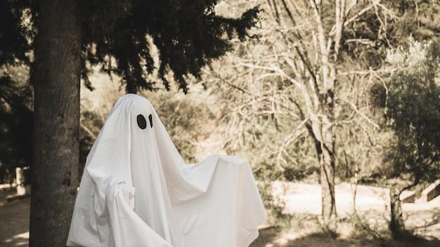 Ghost diffondendo le braccia nel parco