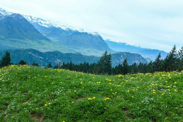Giacimento di fiore sui precedenti della montagna