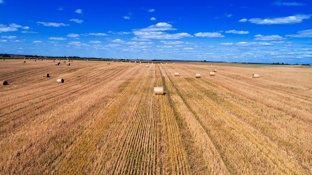 Giacimento di grano dopo il raccolto con le balle di paglia al tramonto