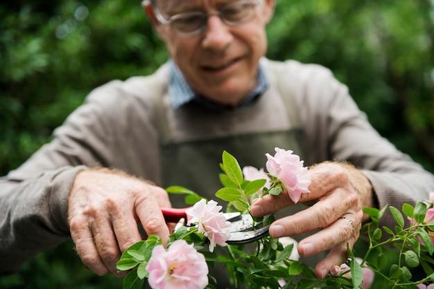 Giardinaggio di fiori uomo anziano