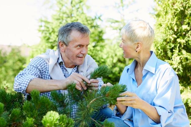 Giardinaggio senior delle coppie