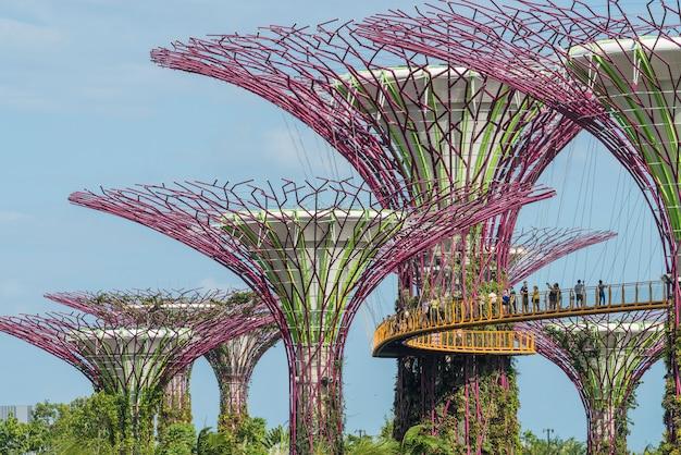 Giardini dalla baia a singapore. gardens by the bay è un parco che si estende su 101 ettari di terreno bonificato nel centro di singapore, adiacente al marina reservoir