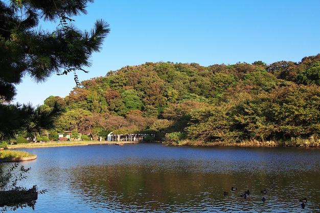 Giardini di sankeien a yokohama, in giappone