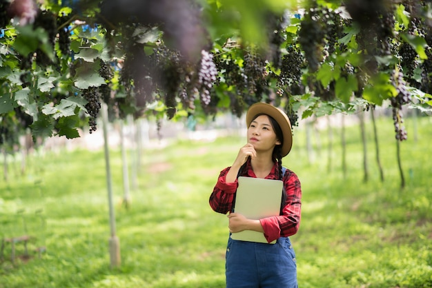 Giardiniere felice delle giovani donne che tiene i rami dell'uva blu matura