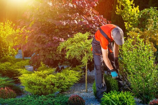 Giardiniere giardino lavori