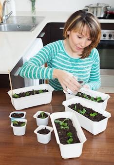 Giardiniere in germogli verdi