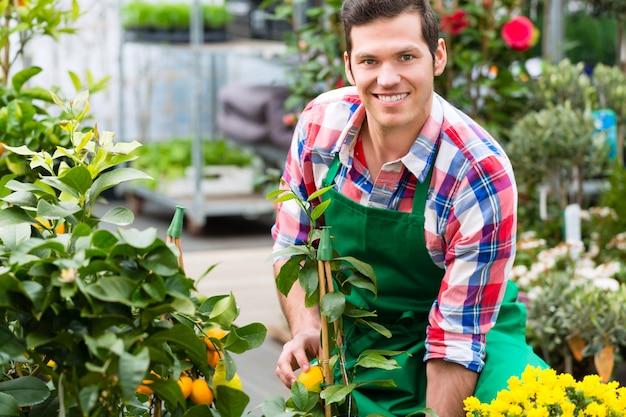 Giardiniere nel giardino di mercato o nella scuola materna