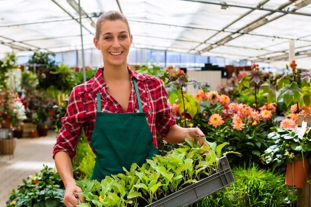 Giardiniere nel suo negozio di fiori casa verde