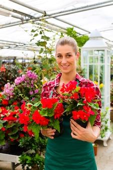 Giardiniere nel suo negozio di fiori in serra