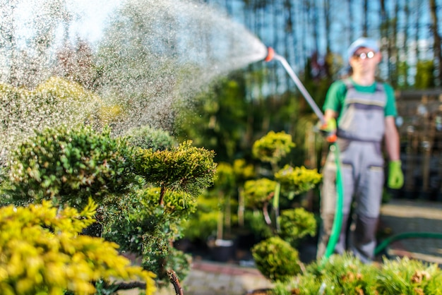 Giardiniere watering plants nel garden store.