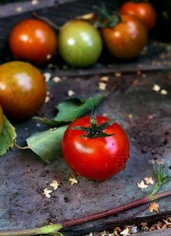 Giardino di pomodori rossi