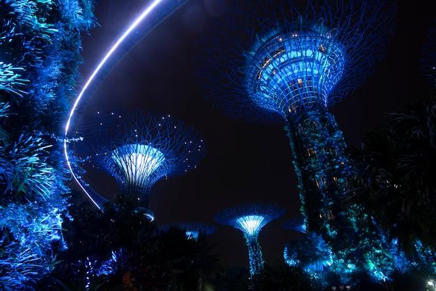 Giardino di supertree alla notte in giardino dalla baia, singapore