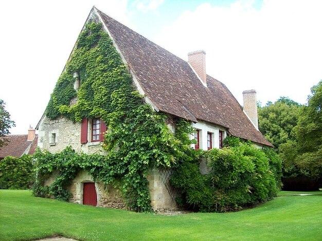 Giardino estivo prato casas primavera fiore foglia