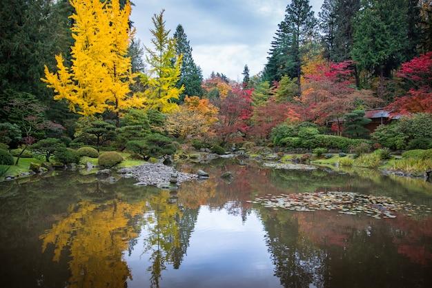 Giardino giapponese in autunno