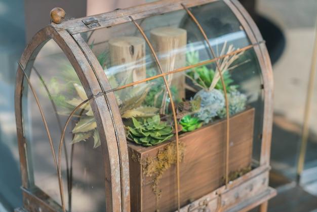 Giardino in bottiglia di vetro