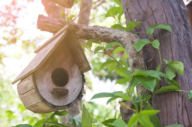 Giardino rurale del birdhouse poco