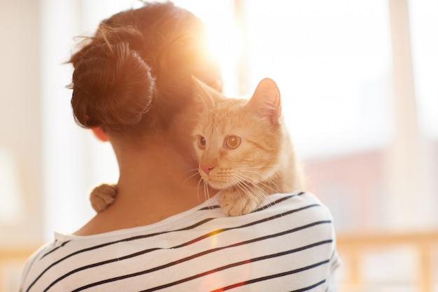 Ginger cat embracing owner