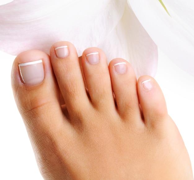 Giocattoli ben curati su un unico piede femminile con pedicure francese su un