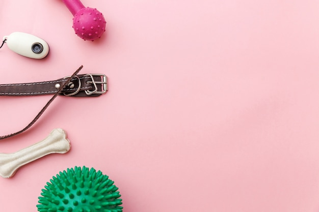 Giocattoli e accessori per zampe di cane per giocare e allenarsi
