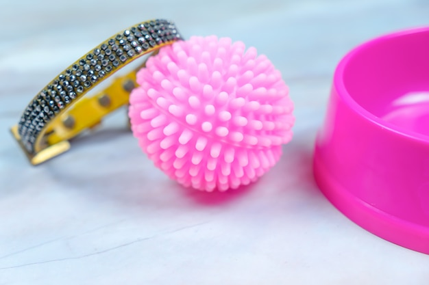 Giocattolo di gomma, collare e ciotola per cane. concetto di accessori per animali domestici.