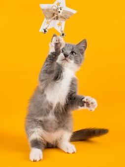 Gioco carino gattino grigio divertente e divertente con un giocattolo di natale su un giallo.