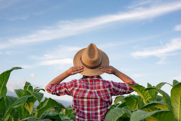 Gioiosa giovane donna in una piantagione di tabacco.