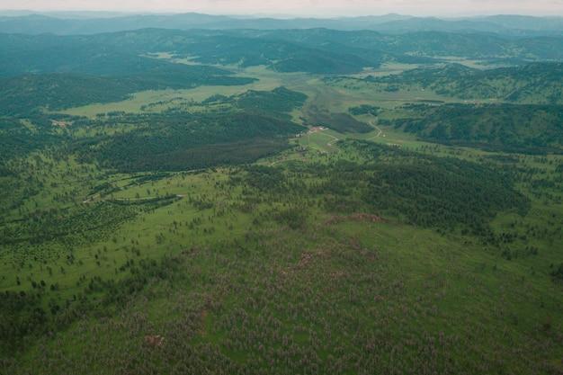 Giornata di sole in una foresta di conifere, sullo sfondo una montagna con una catena montuosa, campi verdi e un cielo blu