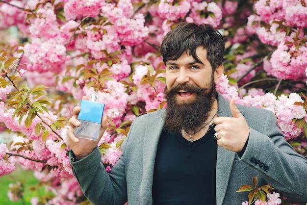 Giorno di primavera. profumo maschile, uomo barbuto. profumo maschile. profumo uomo, fragranza. fiore di primavera rosa sakura. fiori rosa di ciliegio. uomo barbuto che gesturing bene.