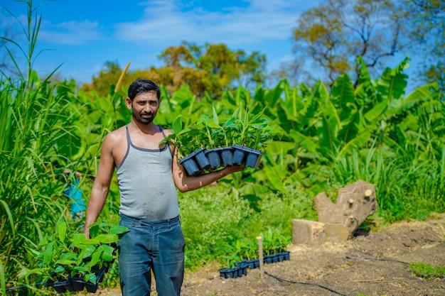 Giovane agricoltore indiano al campo della coltura del tessuto di banana