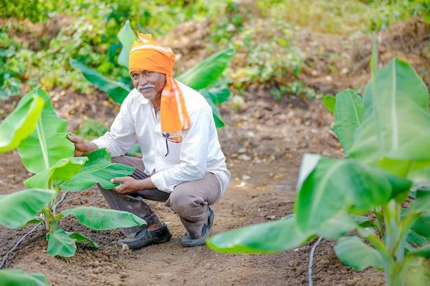 Giovane agricoltore indiano al campo