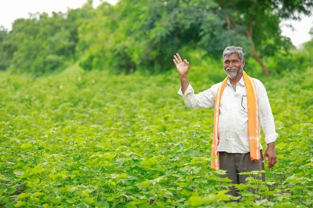Giovane agricoltore indiano al giacimento di cotone, india
