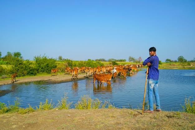 Giovane agricoltore indiano con il suo bestiame