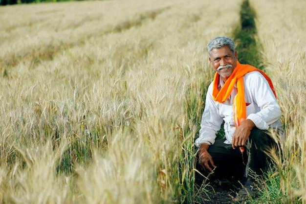 Giovane agricoltore indiano nel suo campo di grano