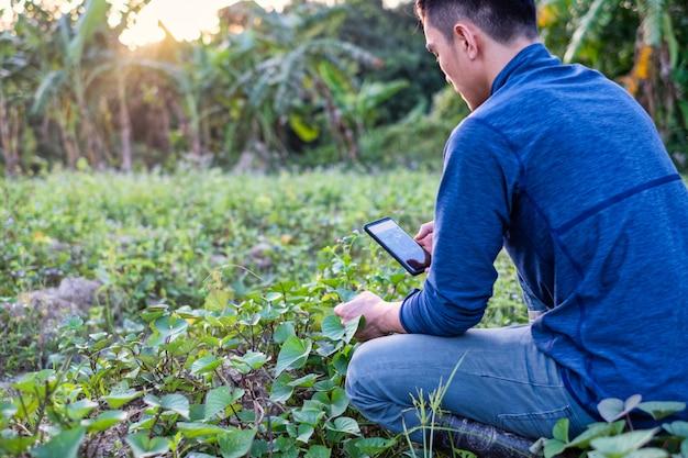 Giovane agricoltore moderno che utilizza la tecnologia del telefono cellulare nel campo agricolo.