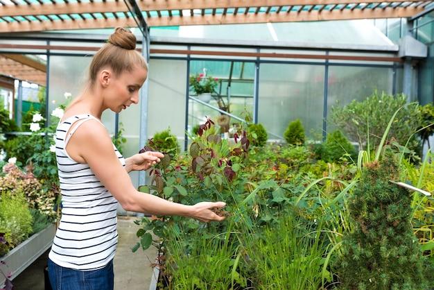 Giovane donna adulta giardinaggio in una serra, piantando alcuni fiori