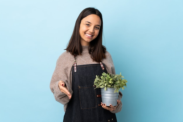 Giovane donna castana della corsa mista che tiene una pianta sopra la parete blu che stringe le mani per la chiusura molto.