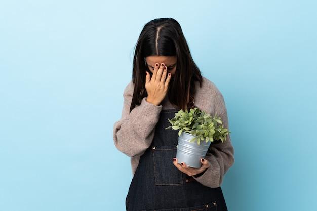 Giovane donna castana della corsa mista che tiene una pianta sopra la parete blu con l'espressione stanca e malata.