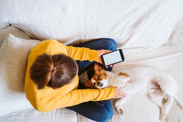 Giovane donna che lavora al computer portatile a casa, seduto sul divano con il suo cane