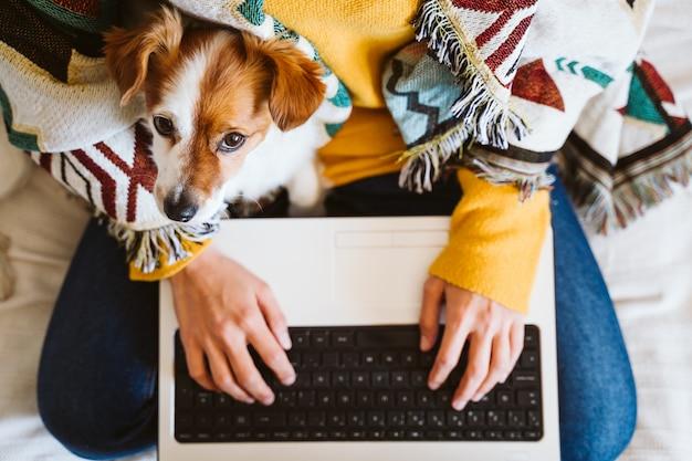 Giovane donna che lavora al computer portatile e al telefono cellulare, piccolo cane sveglio inoltre. seduto sul divano, indossa una maschera protettiva. resta a casa durante il coronavirus covid-2019