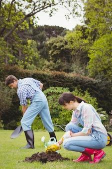 Giovane donna che pianta un alberello in giardino