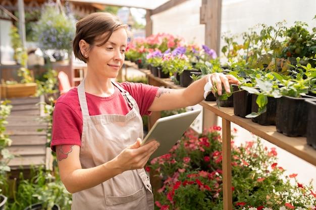 Giovane donna con il touchpad in piedi dalla fila di piantine verdi in vaso scegliendo alcuni di essi per la vendita sul mercato