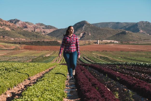 Giovane donna tecnica che cammina in un campo di lattughe
