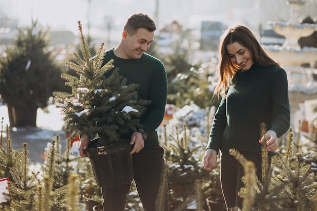 Giovane famiglia che sceglie l'albero di natale in una serra