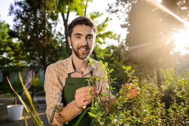 Giovane giardiniere bello che sorride, prendendosi cura delle piante